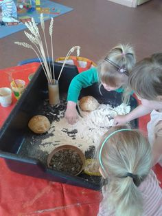 The little red hen sensory and discovery tray Traditional Tales, Traditional Stories, Little Red Hen Activities, Talk 4 Writing, Tuff Spot, Tuff Tray, Farm Theme, Down On The Farm, Preschool Lessons