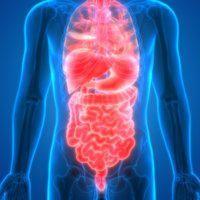 Chronic fatigue syndrome linked to imbalanced microbiome