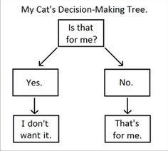 Cat Logic! Cat owners understand.