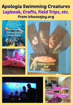 Apologia Swimming Creatures Lapbook, Crafts, Field Trips, etc. #homeschooling #science, #elementary