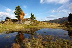 Geführte Wanderungen im Biosphärenpark Nockberge in Österreich - Kärnten Mountains, Nature, Travel, National Forest, Naturaleza, Viajes, Destinations, Traveling, Trips