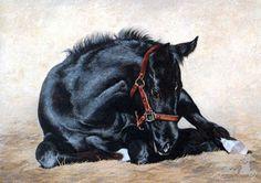 """""""He's a Winner"""" by Adeline Halvorson"""