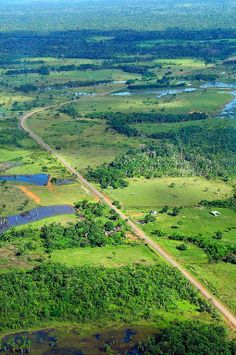 Amazon Rainforest in Brazil: