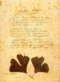 In de liefde voor Marianne von Willemer (1784-1860) speelt het Gingko blad een belangrijke rol, daarvan getuigen gedichten in de West--Oostelijke divan uit 1819); een mooi boek daarover is van Dagmar von Gersdorff: Geschichte einer Liebe (2003)