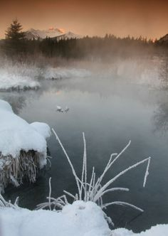 Need a little winter warm-up or just want a relaxing getaway? You don't need to get out of Canada – take a hot springs holiday in Banff, Alberta or British Columbia.