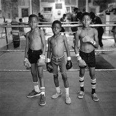boxers children