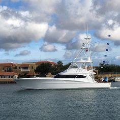 Got' em!! Hey Chama wins the 2016 Bonaire International Billfish Tournament releasing 4sailfish 3 white marlin 2 blue marlin in 2 days. (Photo taken after day 1 practice fishing) by billfish_movement