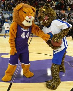 Al E. Cat showing the Paine College Lion how to handle a basketball