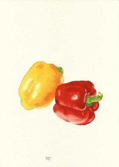 Vegetable Illustration, Baby Illustration, Plant Illustration, Botanical Illustration, Watercolor Illustration, Hungarian Cuisine, Pinterest Instagram, Watercolor Food, Food Painting