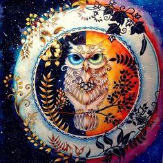 Owl & Artwork