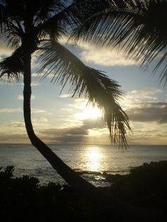 Hawaii - beach