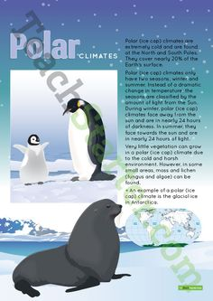 Teaching Resource: A poster to display in the classroom when learning about polar (ice cap) climates.