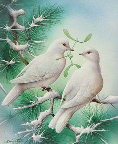 David Finney - Wildlife Artist  Illustrator | Seasonal