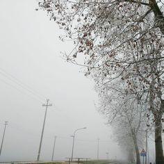 La nebbia ancora mi confonde.