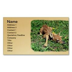 Wild New Born Deer Fawn Business Cards printed on a gold colored background.  Other colors available.
