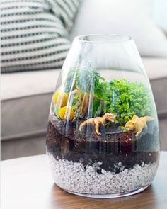 Want the best terrarium plants for your homestead? If you're looking to brighten up your home with a little greenery, then these 17 terrarium plants will give you a foundation of ideas to work from… Terrarium Diy, Terrarium Workshop, Glass Terrarium, Weekend Projects, Diy Projects, Festa Jurassic Park, Crafts For Kids, Arts And Crafts, Deco Originale
