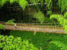 El parque del Cafe Quindio - Colombia. Mucho más sobre nuestra hermosa Colombia en www.solerplanet.com
