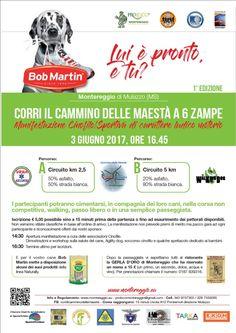 Divertimento e natura: in Lunigiana la prima edizione di Cammina, Corri il Cammino delle Maestà a 6 Zampe :http://www.qualazampa.news/event/divertimento-e-natura-in-lunigiana-la-prima-edizione-di-cammina-corri-il-cammino-delle-maesta-a-6-zampe/