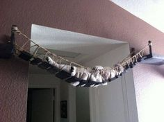 katten-kattenhuis-kattenbed-budgi-4