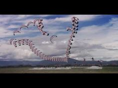"""""""Calibrate"""" - A kiteboarding film loaded with special effects ;)"""