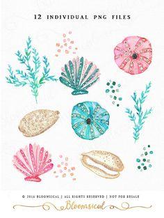 Glitter Seashells Clip Art Glam sea shells coral by Bloomsical