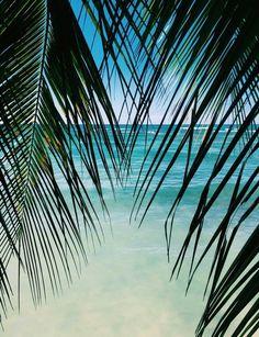 Image via We Heart It #beach #boho #girl #Hot #sea #summer #sun #water