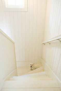 Someday I'll have a white staircase. Makes me wonder where it ends... Thanks Habitually Chic for sharing!
