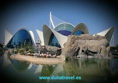 ¿Te quieres escapar a Valencia? Mira nuestras propuestas (Ciudad de las artes, Oceanográfico....)