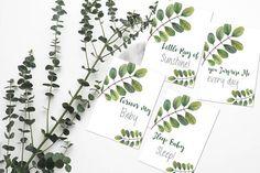 Flatlay FlatLay Cards Flatlay Cards Set Flat Lay Card Set