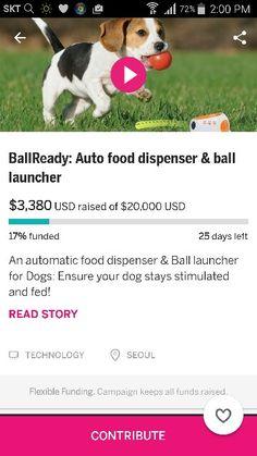 https://www.indiegogo.com/projects/ballready-auto-food-dispenser-ball-launcher/x/13052717#/