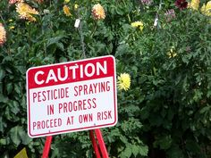 The EPA refuses to ban a deadly pesticide despite proven links between the pesticide and birth defects and developmental disabilities in children. Sign this petition to demand that the EPA take this threat seriously and ban this dangerous pesticide.