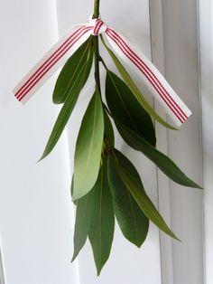 hang sprigs of bayleaf with ribbon. Feels mistletoey.