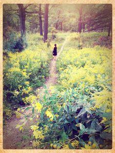 Summer 2012 @High park