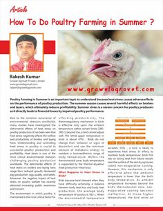 How To Do Poultry Farming in Summer? The article written by Mr. Rakesh Kumar, Marketing Director, Growel Agrovet Private Limited, has been published in Poultry Square magazine, May – 2021 edition Poultry Farming, Heat Stress, Stress Causes, Article Writing, Magazine, Marketing, Summer, Summer Time, Raising Chickens