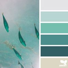 today's inspiration image for { color school } is by @ashleightmc ... thank you for the inspiring #SeedsColor photo share, Ashleigh!