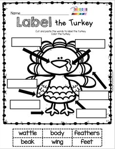 Kindergarten Turkey Worksheets