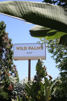 Peeking through the palms in Sunnyvale. Palms Hotel, California Travel, Bungalow, Island, Color, Colour, Islands, Craftsman Bungalows, Bungalows