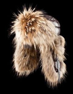 Moncler Hat : very nice with my Roberto Cavalli Boots!!!