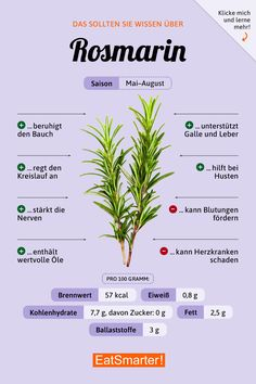 Rosmarin You should know about rosemary Healthy Food List, Healthy Life, Healthy Recipes, Healthy Meals, Cheap Clean Eating, Clean Eating Snacks, Healthy Eating, Menu Dieta, Food Facts