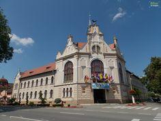 Primaria Salonta | Bihor in imagini Romania, Notre Dame, Architecture, Building, Travel, Posts, Urban, Arquitetura, Viajes