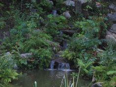 Cette cascade d'eau a été réalisé seulement quelques mois après que la photo ait été prise. Lorsque les plantes prennent leur place, votre projet d'aménagement paysager prend tout son sens. #Landscaping Backyard Hill Landscaping, Place, Landscapes, Photos, Mountains, House Styles, Nature, Travel, Gardens