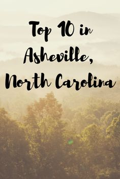 """Asheville, North Carolina is a destination that immediately stole my heart. Not only is it a destination that I really wanted to return, I actually moved to Asheville and it's now one of the places we call """"home"""". People often ask me what they should do in Asheville. So, I decided to make For the Love of Wanderlust's Top 10 in Asheville. These are my broad top 10 activities of things not to miss in Asheville, and they can all be completed over a long weekend. DRINK CRAFT BEER Wedge Brewing…"""