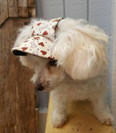 3a799b20f4e Small Dog Visor Hat Blue Paw   Bone Print Doggy SuperVisor Small Cat