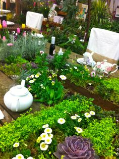 http://www.valeaston.com/2014/03/a-planted-tea-table-and-a-wall-of-sedums-ideas-for-your-own-garden-from-the-portland-show.html -- Red Bird's Yard Garden Patio Show 2014 Tea table