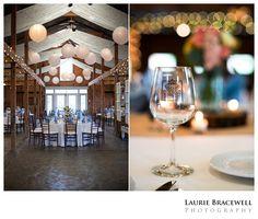 Laurie Bracewell Photography