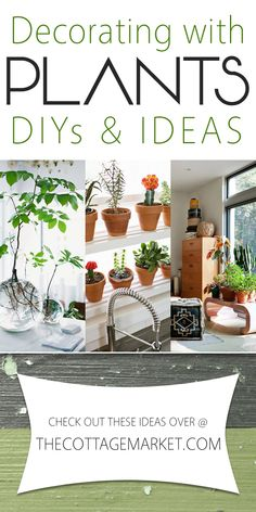 Decorating with Plants DIY's and Ideas - The Cottage Market