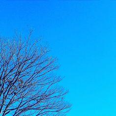 寒空 #landscape