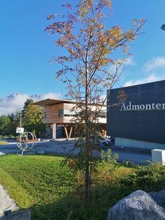 Beautiful autumn day in Admont. Natural Wood Flooring, Wooden Staircases, Autumn Day, Wood Paneling, Creative Design, National Parks, Mansions, House Styles, Nature