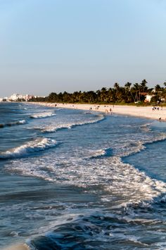 Naples Florida beach.  I liked this Naples photo so I pinned it on our Naples, Florida board. Please see NaplesBestAddress... for our Naples, Florida real estate thoughts and ideas.