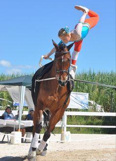 Vaulting. Gymnastics on horses.